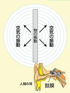 音の伝わり.jpg