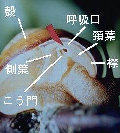 nantai04[1].jpg
