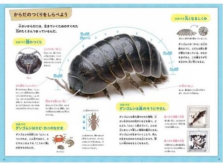 kyouzai-j_q750468_1.jpg