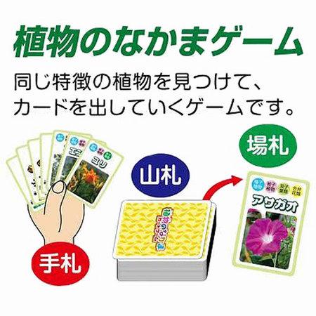 kyouzai-j_a055723_5.jpg