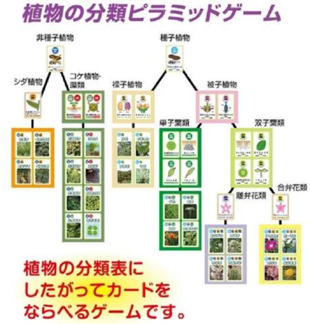 kyouzai-j_a055723_4.png