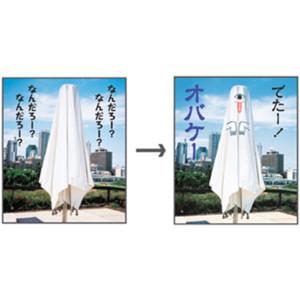 kyouzai-j_koke-wc13_4.jpg