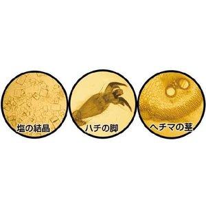 kyouzai-j_a008764_1.jpg